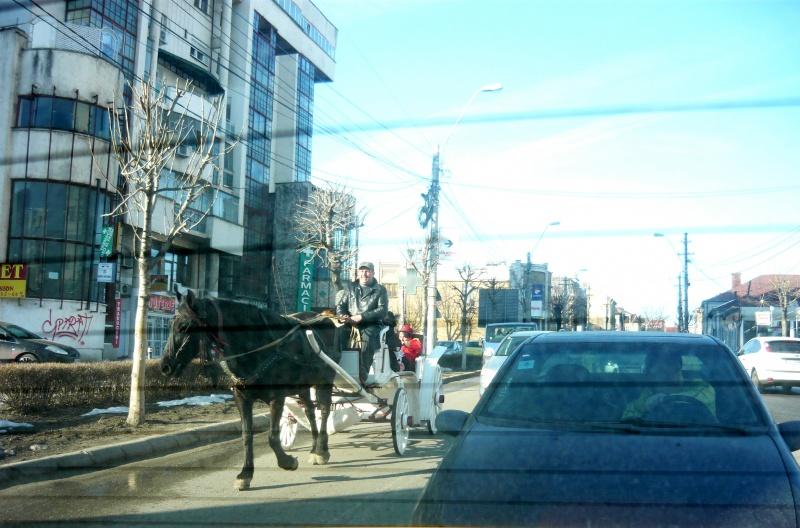 Craiova văzută din birjă sau ce n-a mai văzut Craiova: o birjă