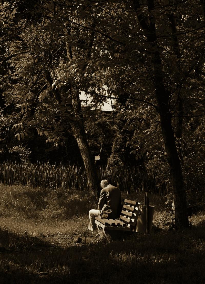 """Andrada Elena Trandafir - """"Singurătate"""" (Medalia de Bronz a DACICA SRAF). O lucrare sensibilă, de un sentimentalism subliniat de culoarea bronzului (se pare că a atras medalia de aceeaşi culoare), pe care fotografii profesionişti o înţeleg perfect."""