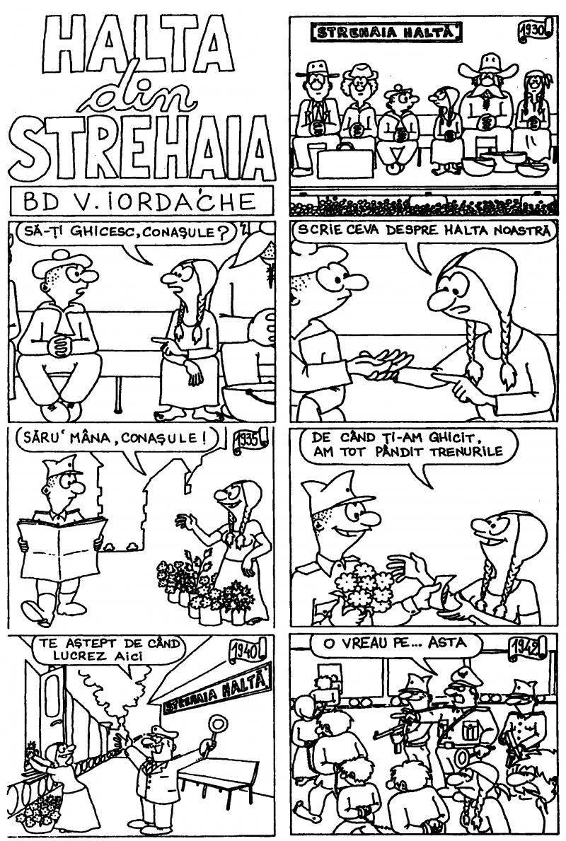 Halta din Strehaia (1)